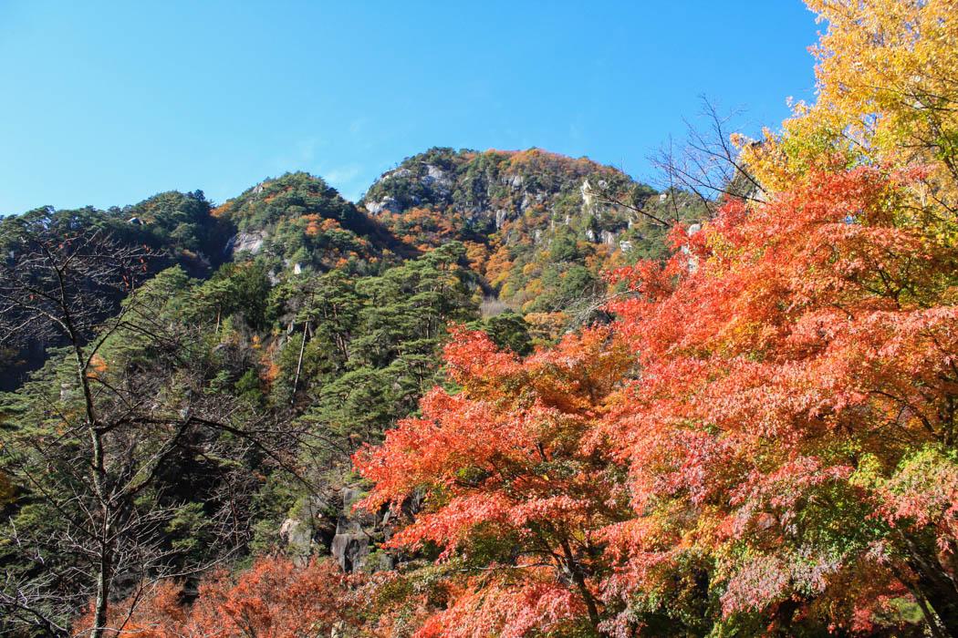 Reisezeit für Japan