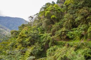 Wandern in Taiwan - Tipps von TRAVELhunka