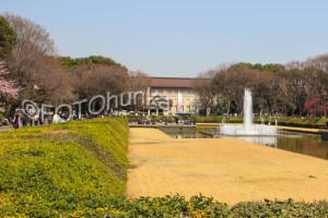 Tokio Reiseführer Top 6 Ueno Park undUmgebung
